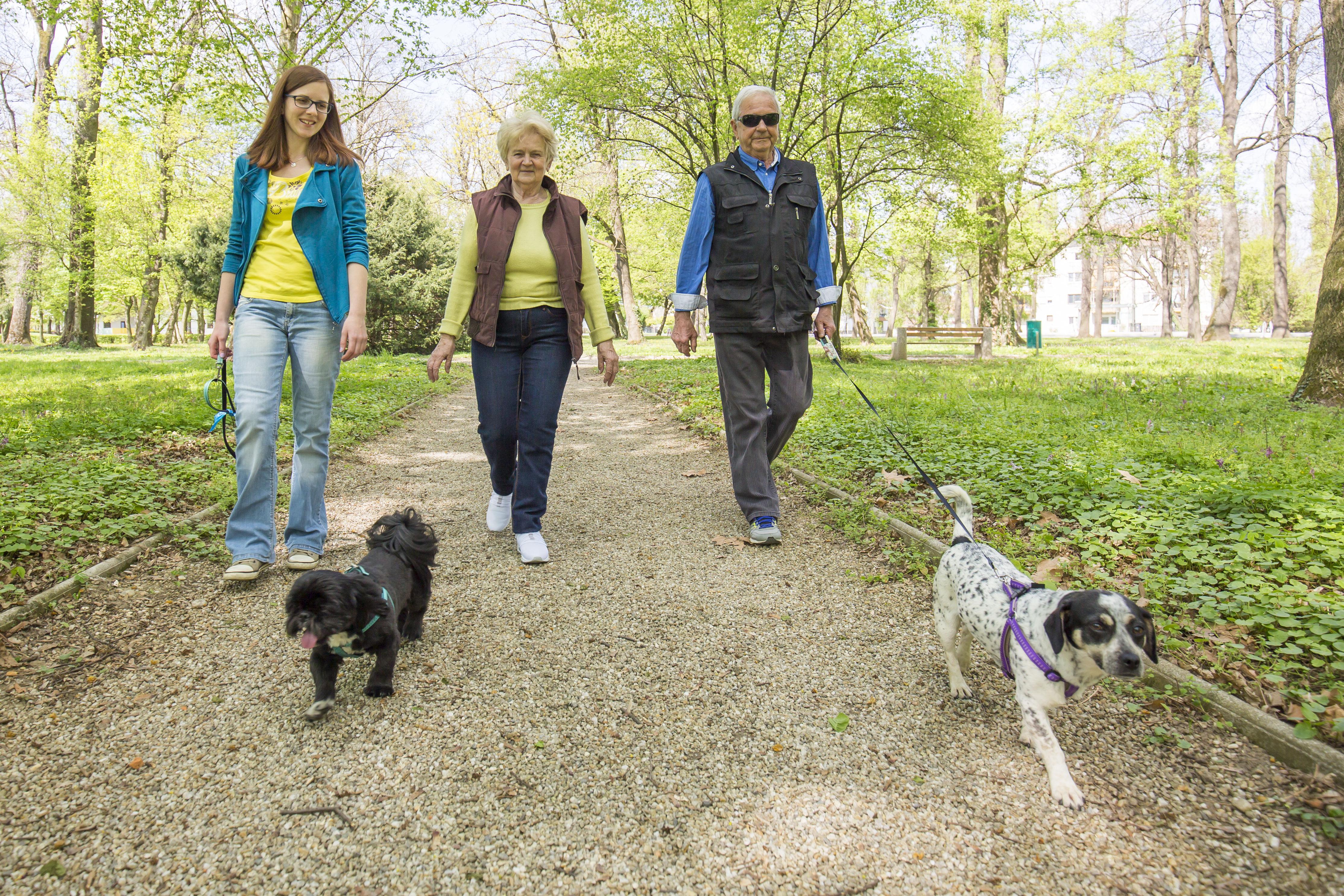 Sociale wandeling